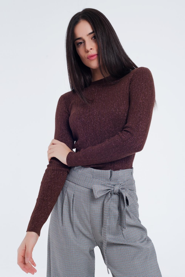 Tight sweater with long sleeves in brown