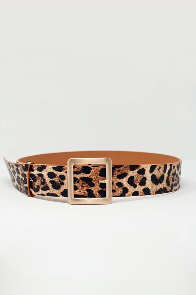 Cintura leopardata